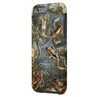 Vintage Ernest Haeckel Frogs Print Tough iPhone 6 Case