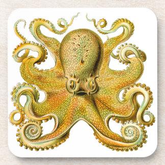 Vintage Ernst Haeckel Octopus in Yellow Beverage Coaster