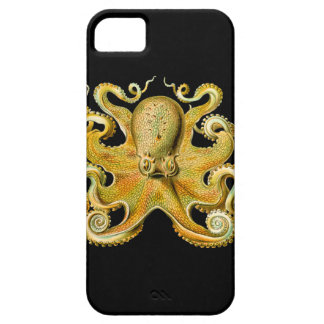 Vintage Ernst Haeckel Octopus in Yellow iPhone 5 Cases