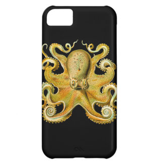 Vintage Ernst Haeckel Octopus in Yellow iPhone 5C Cover