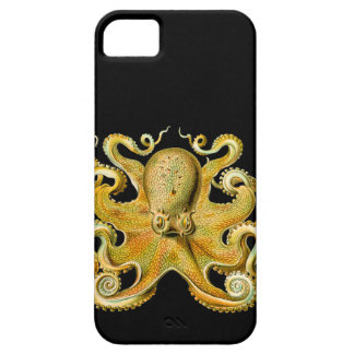 Vintage Ernst Haeckel Octopus in Yellow iPhone 5 Covers