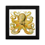 Vintage Ernst Haeckel Octopus in Yellow Trinket Box