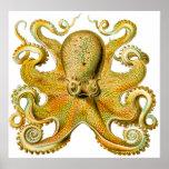 Vintage Ernst Haeckel Octopus in Yellow Print