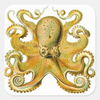 Vintage Ernst Haeckel Octopus in Yellow Square Sticker