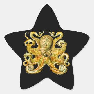 Vintage Ernst Haeckel Octopus in Yellow Star Sticker