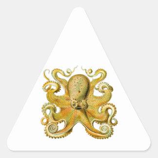 Vintage Ernst Haeckel Octopus in Yellow Triangle Sticker