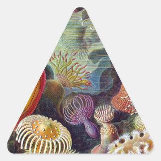 vintage-Ernst-Haeckels-Kunstformen-Mulit Dark Stickers