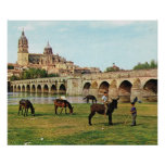 Vintage España, Salamanca, catedral de la reproduc Poster