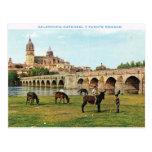 Vintage España, Salamanca, catedral Postal