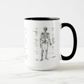 Vintage - esqueleto etiquetado - frente, parte taza