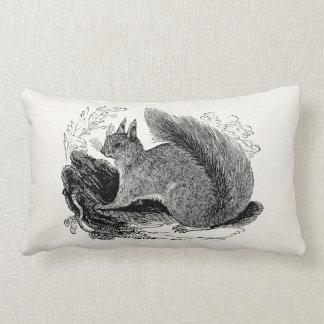 Vintage European Squirrel 1800s Squirrels Lumbar Pillow
