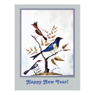 Vintage exotic birds painting postcard