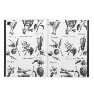 Vintage exotic fruit etching case