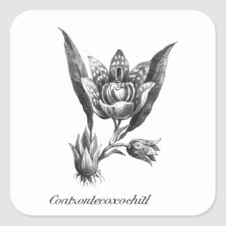 Vintage exotic orchid flower etching sticker