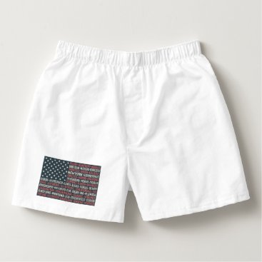 Vintage Faded American Flag State Names Words Art Boxers