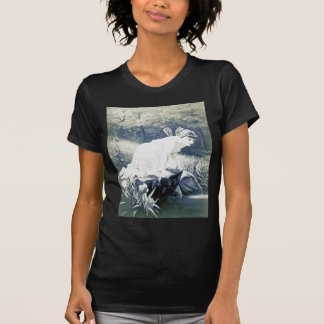 Vintage - Fairy At The Waters Edge T Shirt