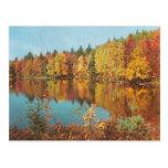Vintage Fall Scene Postcard