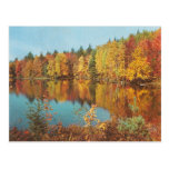 Vintage Fall Scene Postcards