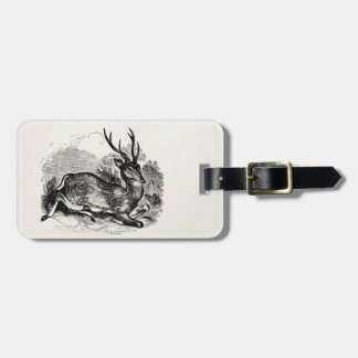 Vintage Fallow Deer Buck Personalized Illustration Tags For Bags