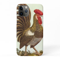 Vintage Farm Animals Chickens, Proud Rooster iPhone 11 Pro Case