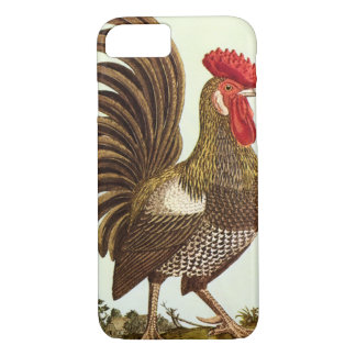 Vintage Farm Animals Chickens, Proud Rooster iPhone 8/7 Case