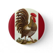 Vintage Farm Animals Chickens, Proud Rooster Pinback Button