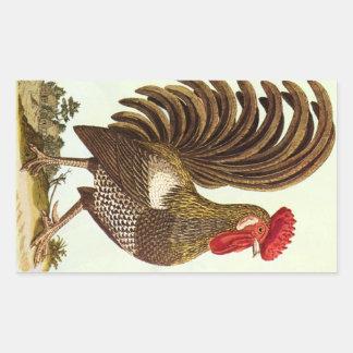 Vintage Farm Animals Chickens, Proud Rooster Rectangular Sticker
