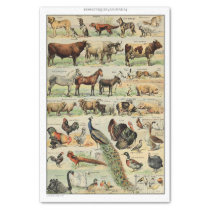 Vintage Farm Animals Decoupage Tissue Paper