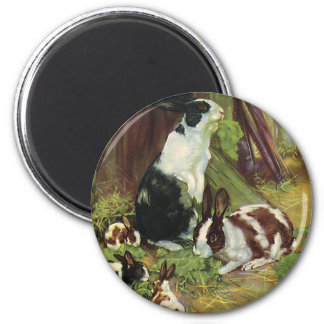 Vintage Farm Animals, Pet Rabbits Playing by Hutch 2 Inch Round Magnet