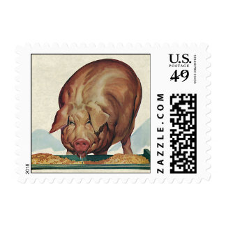 Vintage Farm Animals, Pig Eating Slop at a Trough Postage