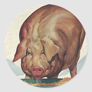 Vintage Farm Animals, Pig Eating Slop at a Trough Round Stickers