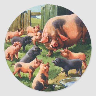 Vintage Farm Animals, Pig with Cute Baby Piglets Classic Round Sticker
