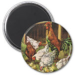 Vintage Farm Animals, Rooster, Hens, Chickens 2 Inch Round Magnet