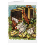Vintage Farm Animals, Rooster, Hens, Chickens Card