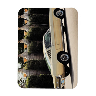 Vintage Fastback 1965 Mustang 2+2 Honey Gold Magnet