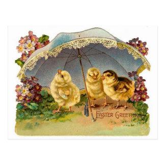 Vintage feliz de los polluelos de Pascua Tarjeta Postal
