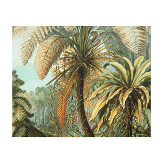 Vintage Ferns and Palm Tree Botanical Canvas Print