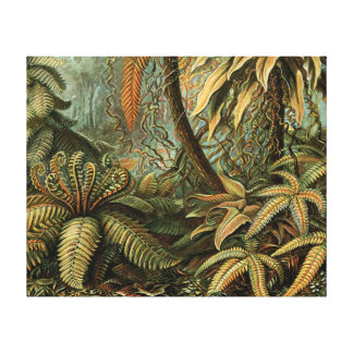 Vintage Ferns and Palm Tree Botanical Stretched Canvas Prints