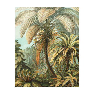 Vintage Ferns and Palm Tree Botanical Gallery Wrap Canvas