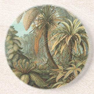 Vintage Ferns and Palm Tree Botanical Drink Coaster