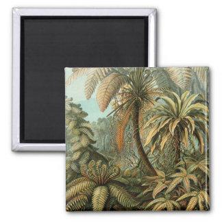 Vintage Ferns and Palm Tree Botanical Magnet