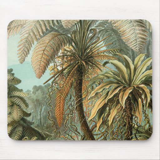 Vintage Ferns and Palm Tree Botanical Mouse Pad