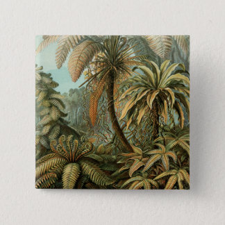 Vintage Ferns Palm Tree Botanical Drawing Pinback Button