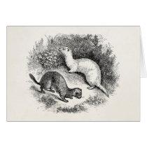 Vintage Ferret 1800s Ferrets Weasels Minks Card