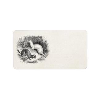 Vintage Ferret 1800s Ferrets Weasels Minks Label