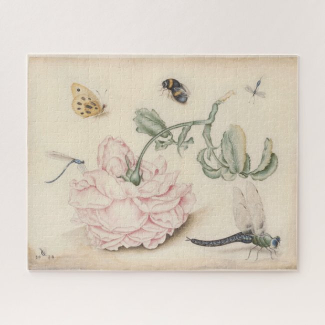 Vintage Fine Art with a pale pink rose and insects