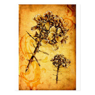 Vintage fineart F041 flower Postcard