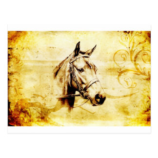 Vintage fineart F075 horse Postcard