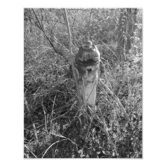 Vintage Fire Hydrant Photograph