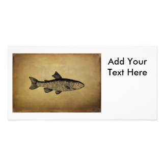 Vintage Fish Illustration Card